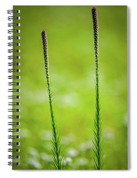Prairie Blazing Star Spiral Notebook