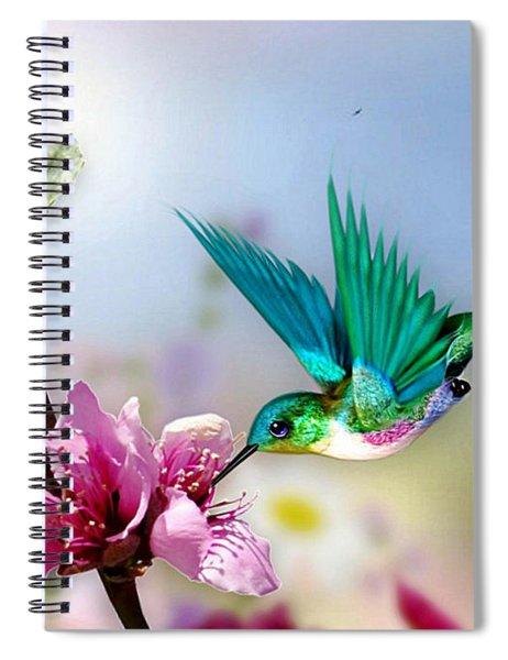 Pretty Hummingbird Spiral Notebook