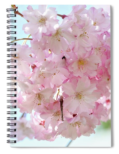 Pretty Pink Blossoms Spiral Notebook