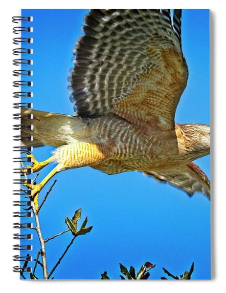 Prey In Sight Spiral Notebook