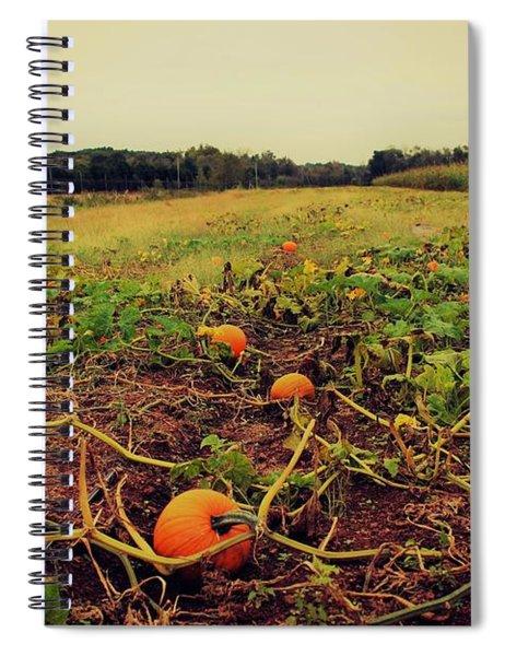 Pumpkin Picking Spiral Notebook