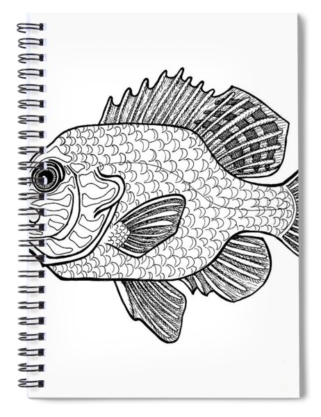 Pumpkinseed Fish Spiral Notebook