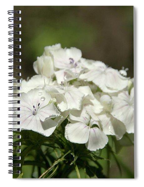 Pure Still Life Spiral Notebook