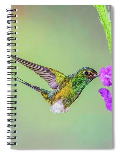 Purple Attraction Spiral Notebook