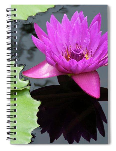 Purple Majesty Spiral Notebook