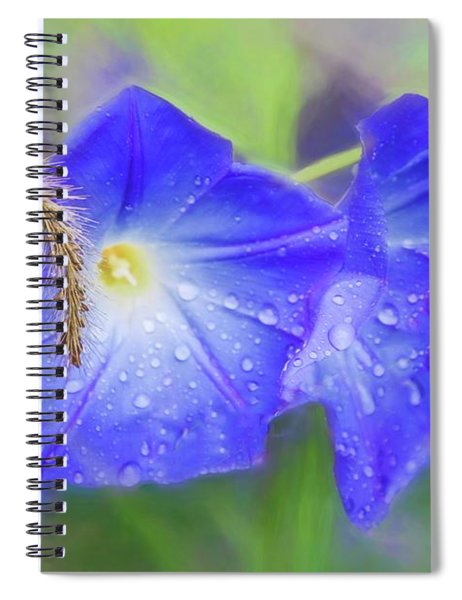 Purple Morning Glories In The Rain. Spiral Notebook