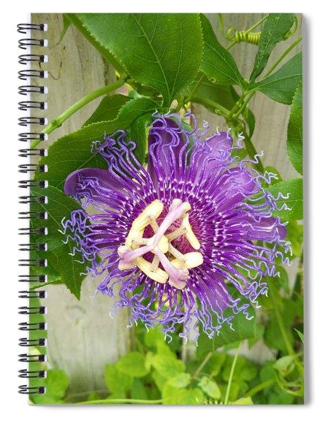 Purple Passionflower Spiral Notebook
