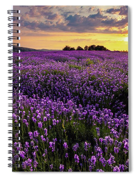 Purple Sea Spiral Notebook