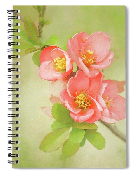Quatro Quince Spiral Notebook