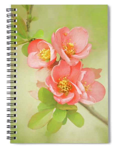 Spiral Notebook featuring the photograph Quatro Quince by Emily Johnson