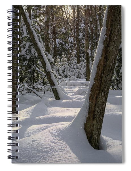 Quiet Spiral Notebook
