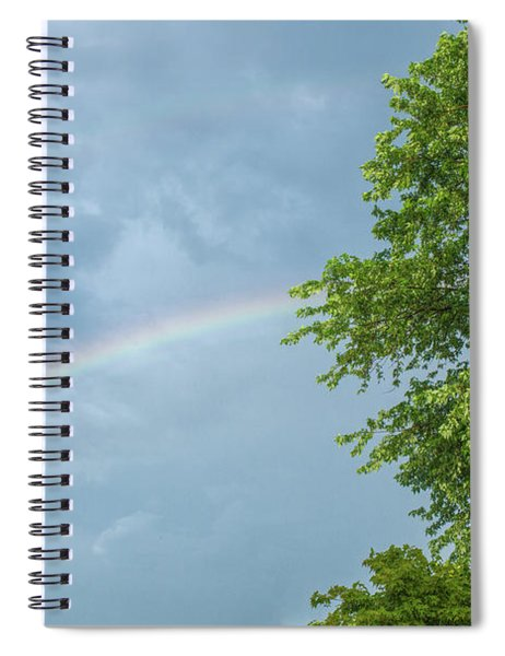 Rainbow And A Tree Spiral Notebook