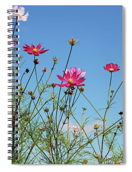 Reach For The Cosmos Spiral Notebook