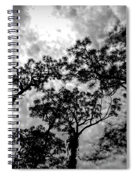 Reach For The Sky Spiral Notebook