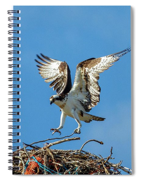 Reaching For Home Spiral Notebook