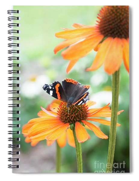 Spiral Notebook featuring the photograph Red Admiral Butterfly On Echinacea Flower  by Tim Gainey