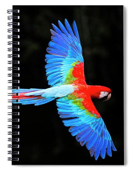 Red And Green Macaw Ara Chloropterus Spiral Notebook