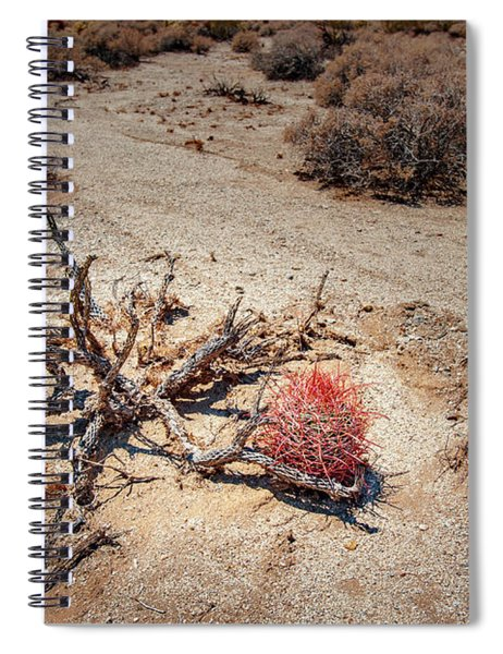 Red Barrel Cactus Spiral Notebook