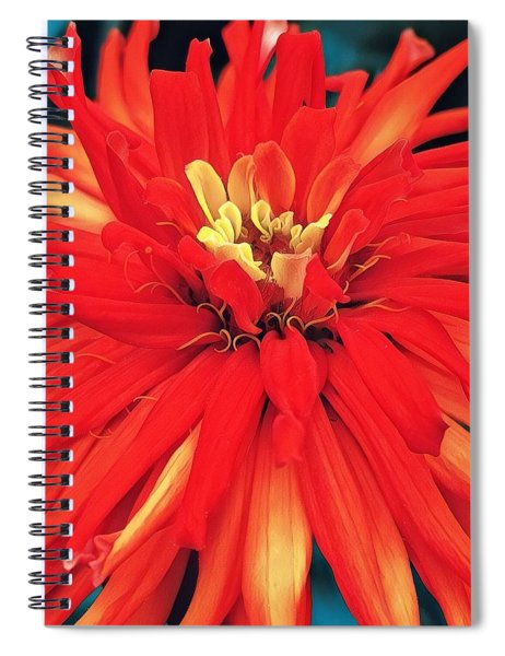 Red Bliss Spiral Notebook
