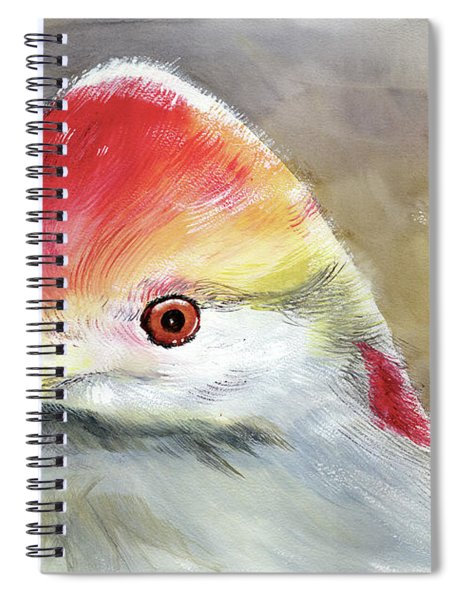 Red Crested Turaco Spiral Notebook