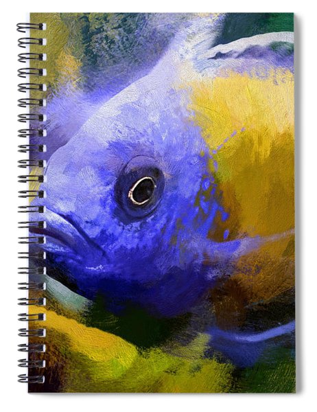 Red Fin Borleyi Cichlid Artwork Spiral Notebook