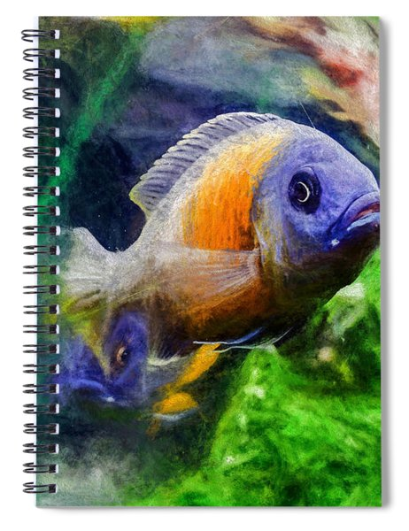 Red Fin Borleyi Cichlid Spiral Notebook