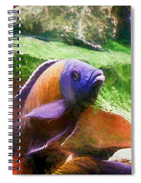 Red Fin Borleyi Cichlid Rising Spiral Notebook
