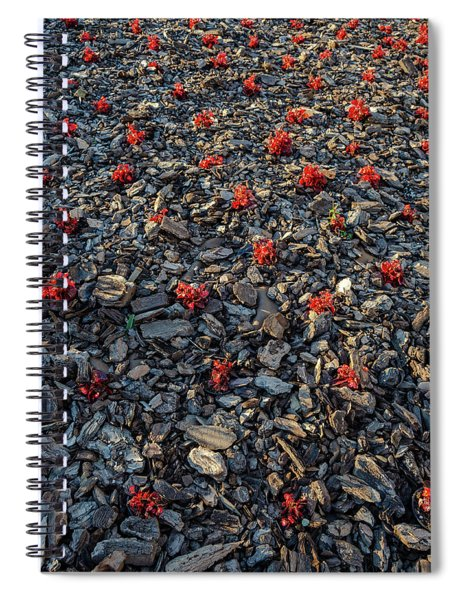 Red Flowers Over Stones Spiral Notebook
