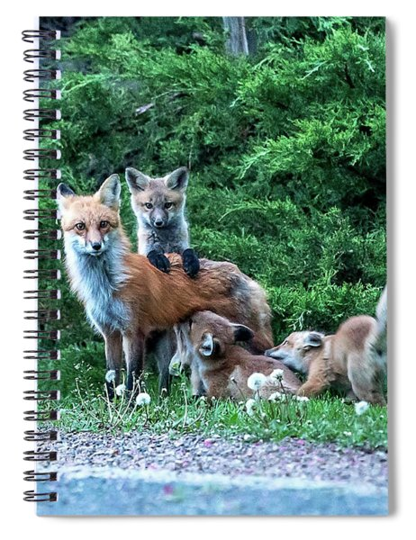 Red Fox Family Spiral Notebook