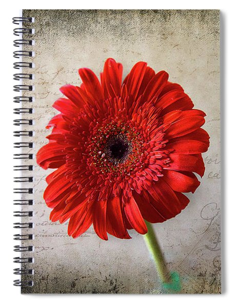 Red Gerbera Spiral Notebook