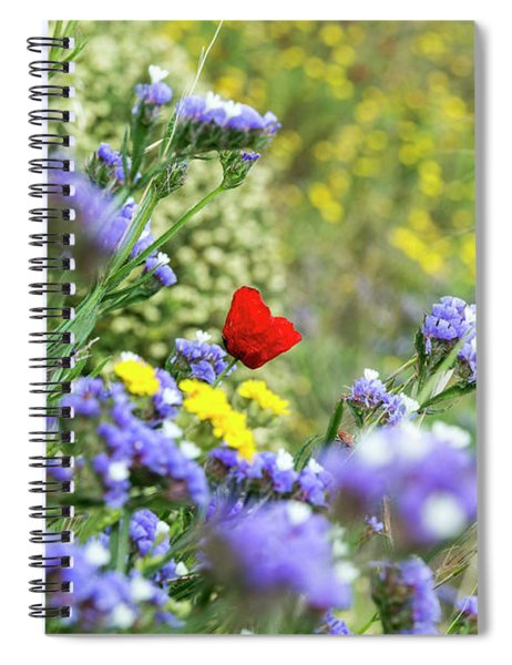 Spiral Notebook featuring the photograph Red In Blue Field by Arik Baltinester
