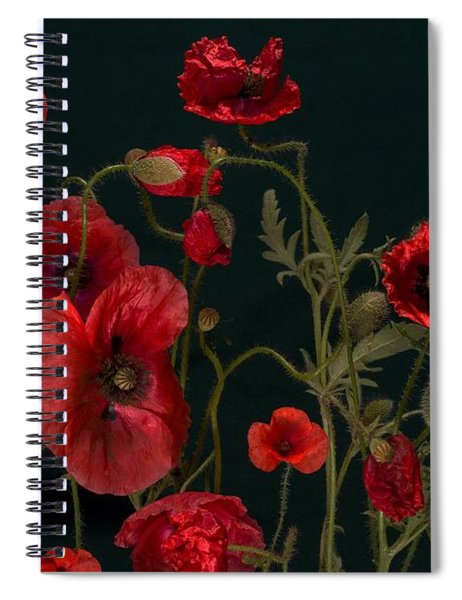 Red Poppies On Black Spiral Notebook