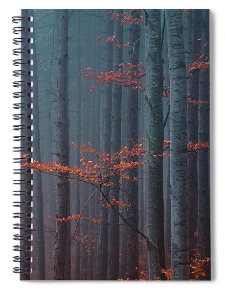 Red Wood Spiral Notebook