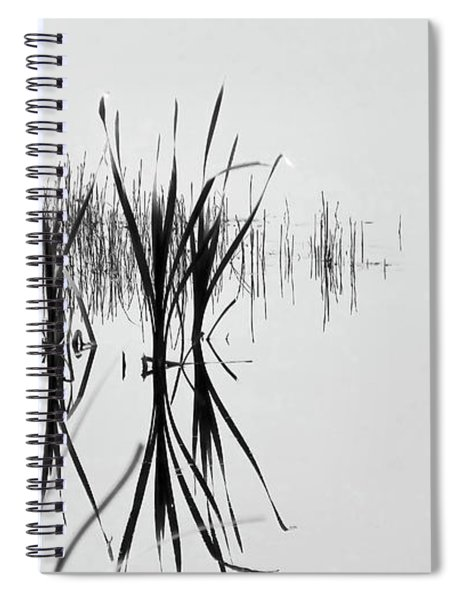 Reed Reflection Spiral Notebook