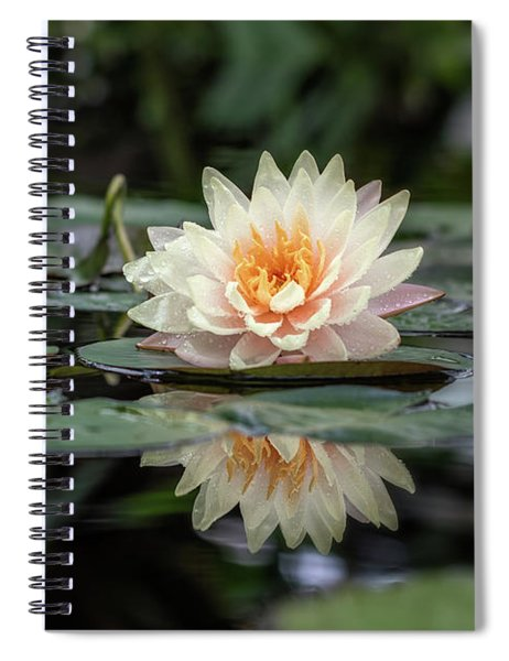 Delicate Reflections Spiral Notebook