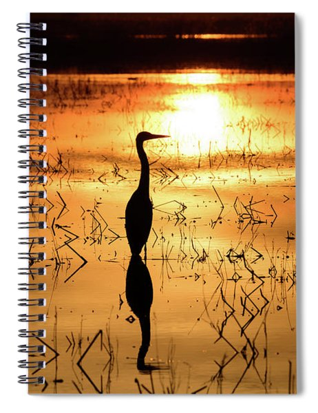 Reflecting  Spiral Notebook