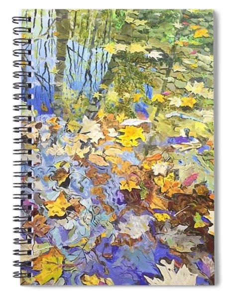 Reflection 1 Spiral Notebook
