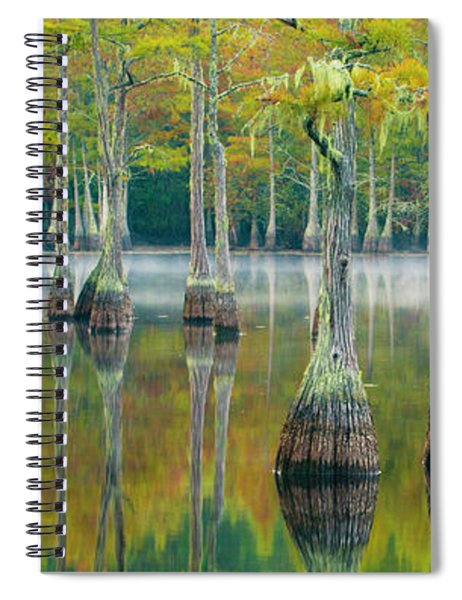 Reflection Of Bald Cypress Taxodium Spiral Notebook