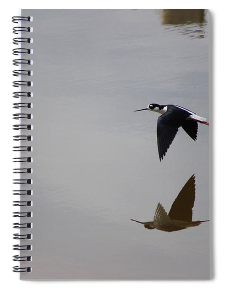 Reflection Of The Salton Sea Black Neck Stilt Flying Spiral Notebook
