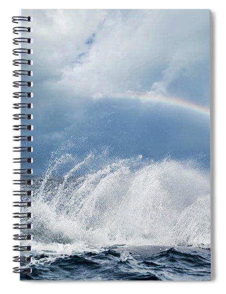 Resounding Joy Spiral Notebook