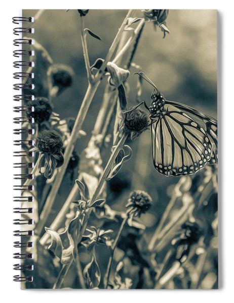 Resting Butterfly Bw Spiral Notebook