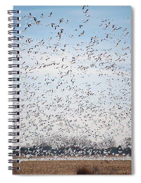 Resting On The Flyway Spiral Notebook