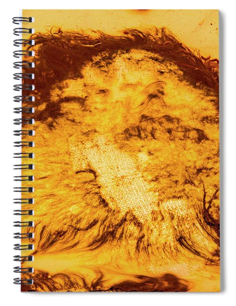Rhapsody In Yellow Spiral Notebook