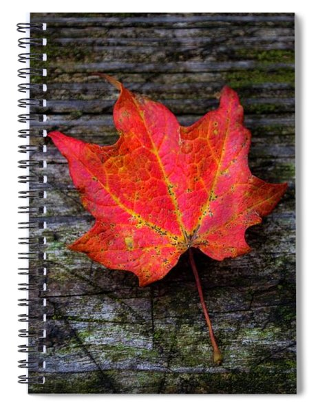Ripe Spiral Notebook