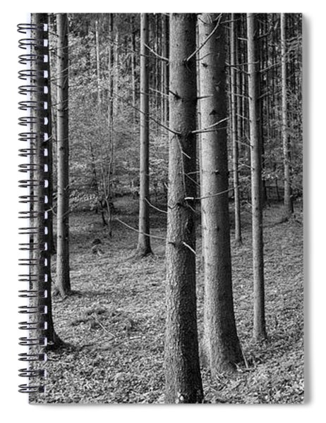 Road Passing Through Forest, Stuttgart Spiral Notebook