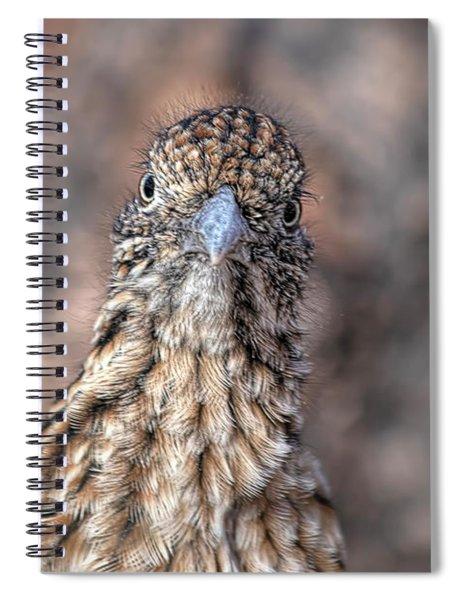 Roadrunner Portrait Spiral Notebook