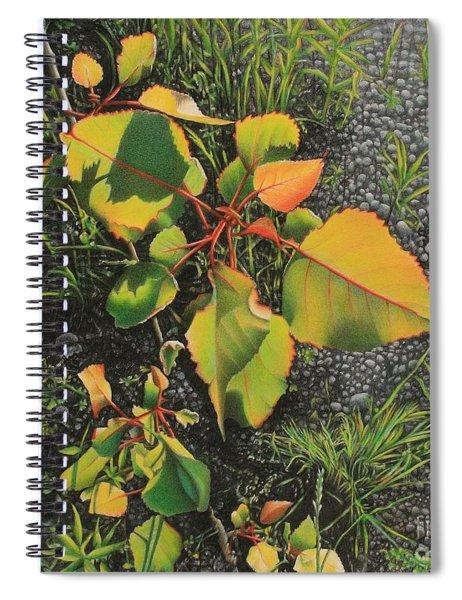 Roadside Attraction Spiral Notebook