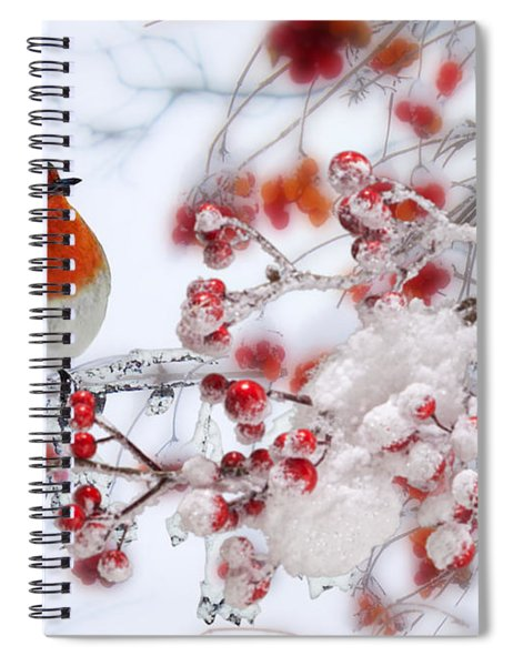 Robin And Berries Spiral Notebook