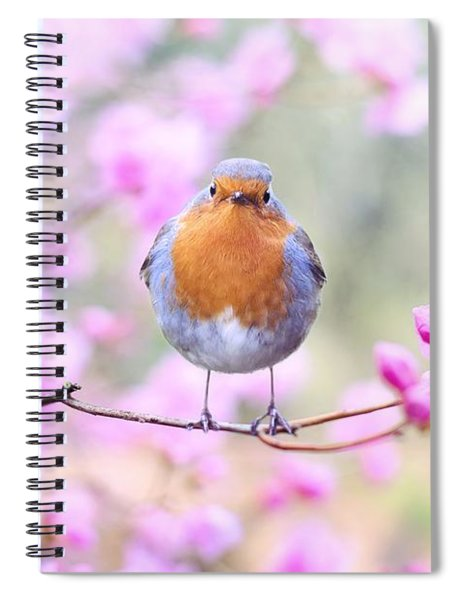 Robin On Pink Flowers Spiral Notebook