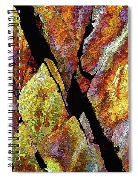 Rock Art 17 Spiral Notebook